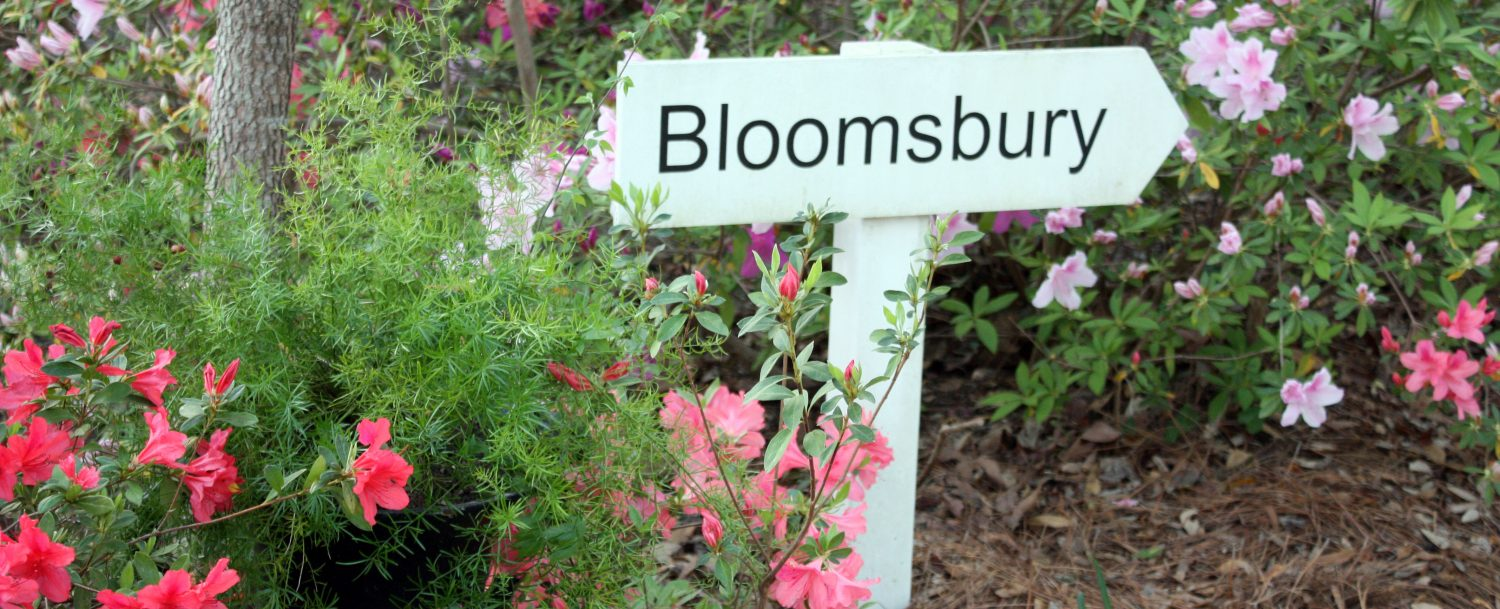 A white sign directs guests past beautiful blooming Azaleas to Bloomsburg.