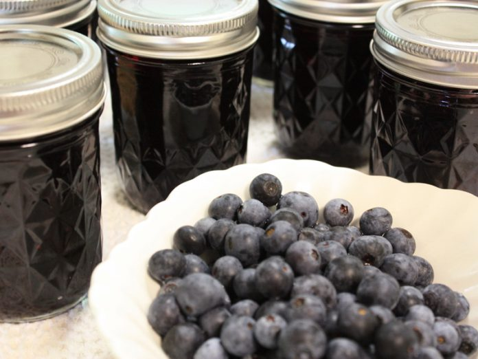 A bowl of blueberries surrounded by jars of blueberry jelly. This is going to be the winner in the canning competition.