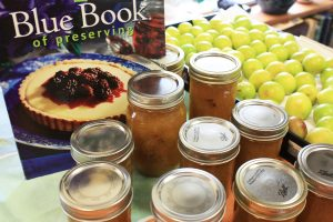 Fresh preserves sitting before the Ball Book of Preserves, the canning competition bible. Many of our submissions for the Jam-Off come from this book.