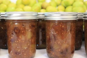 Canning Competition 2018. Jars of fig jam in front of a tray of fresh figs -- just waiting to join the annual Jam-Off